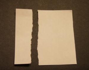 Аппликация из обрывной бумаги (28)