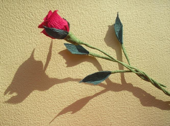 Розы из гофрированной бумаги пошагово (2)