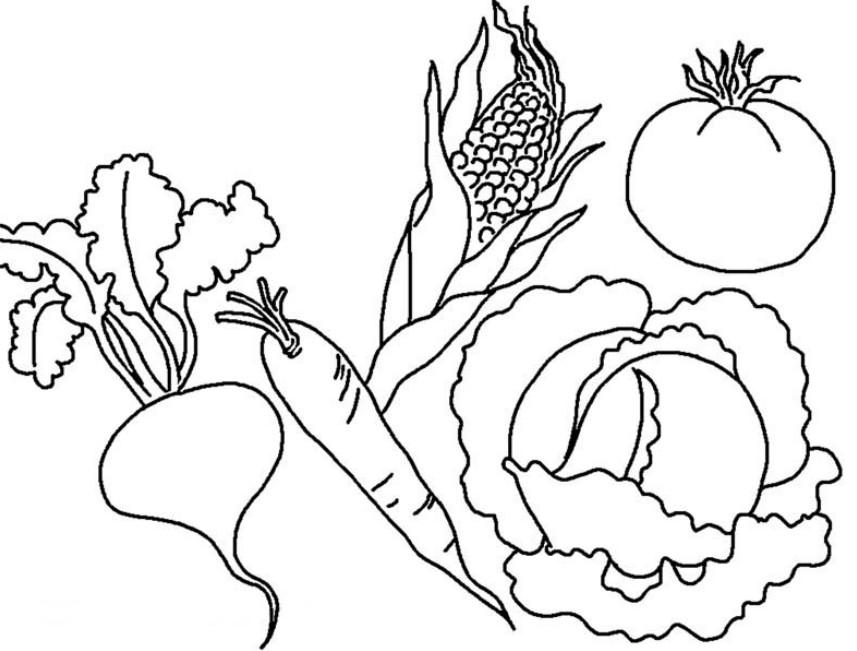 Раскраска овощи