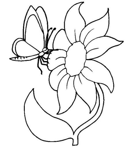 Бабочки рисунок для мамы