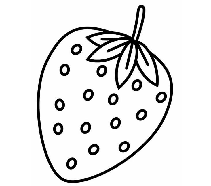 Рисунок фруктов на бумаге 100
