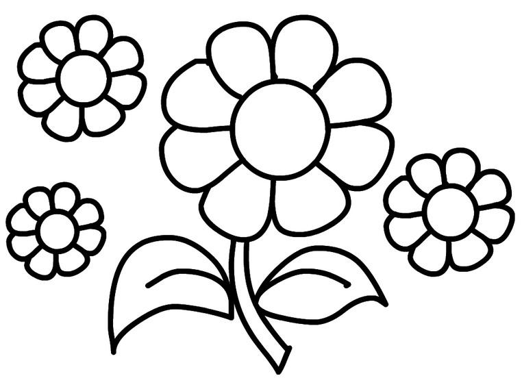 Раскраски цветы. Картинки для детей бесплатно.
