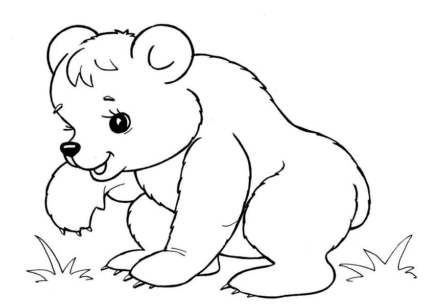 Разукрашки для детей с животных