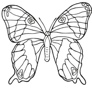 Бабочки из бумаги своими руками (3)