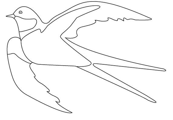 раскраски птицы картинки распечатать бесплатно