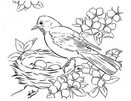 Распечатать раскраска птичка
