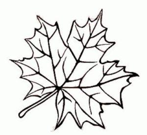 Шаблоны осенних листьев