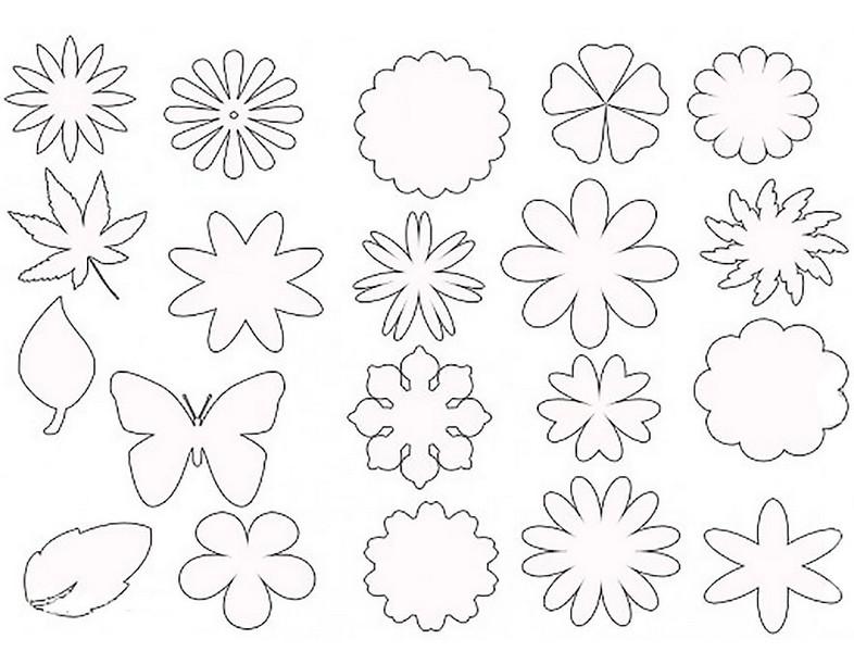 Картинки цветов ромашек букеты