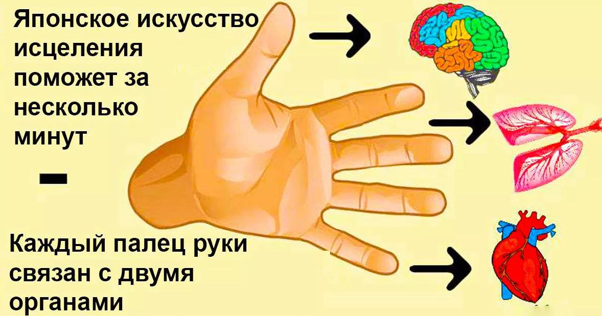 Каждый палец связан с 2 органами. Японский метод самоисцеления за 5 минут