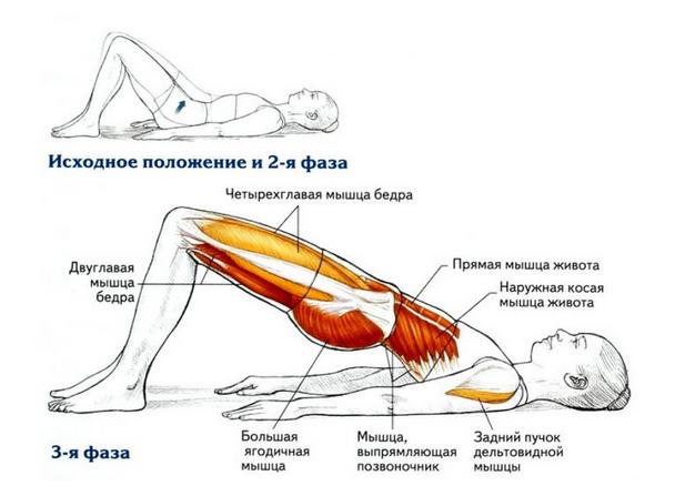 8 простых и эффективных упражнений для красивой осанки
